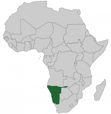 Continental map of Africa with countries outlined with highlighted Namibia