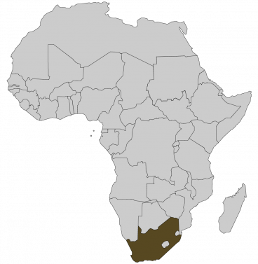 Continental map of Africa with countries outlined with highlighted South Africa